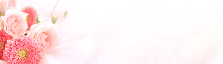 Ancient Memory Classic Purpose Oils